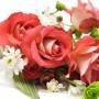 розы-1